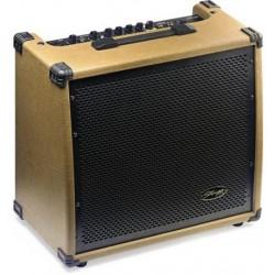 Amplificator chitara Stagg 60 AA R