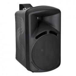 Set 2 boxe DAP Audio PM-42B