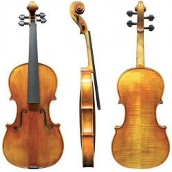 Viola 39,5 cm cu set-up, GEWA VIOLA MAESTRO 25 (401.821.100)