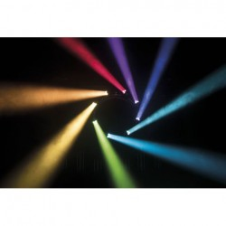 Moving head LED Infinity iW-340 RDM, RGBW Wash