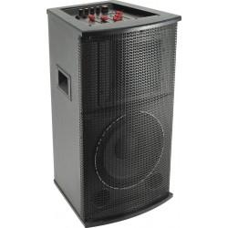 Boxa activa cu BT/FM/MP3 + 2 microfoane Sal PAX 25BT