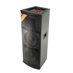 Boxa activa cu BT/FM/MP3 + 2 microfoane Sal PAX 225B